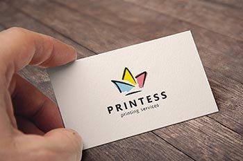 PRINTESS logo manuál  informačný systém